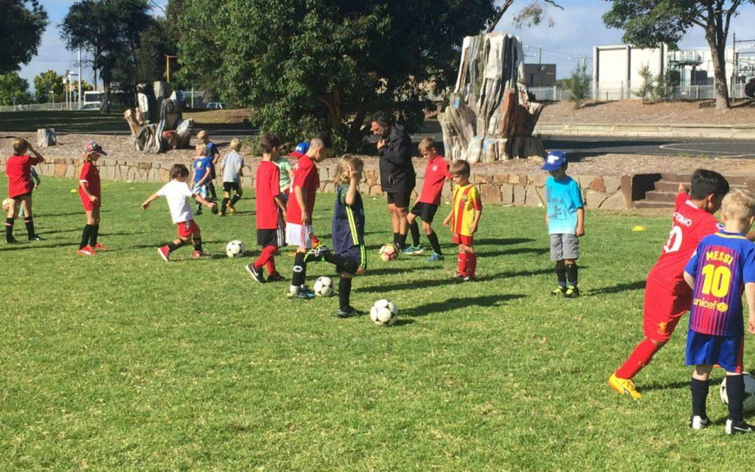 Free Soccer Clinics